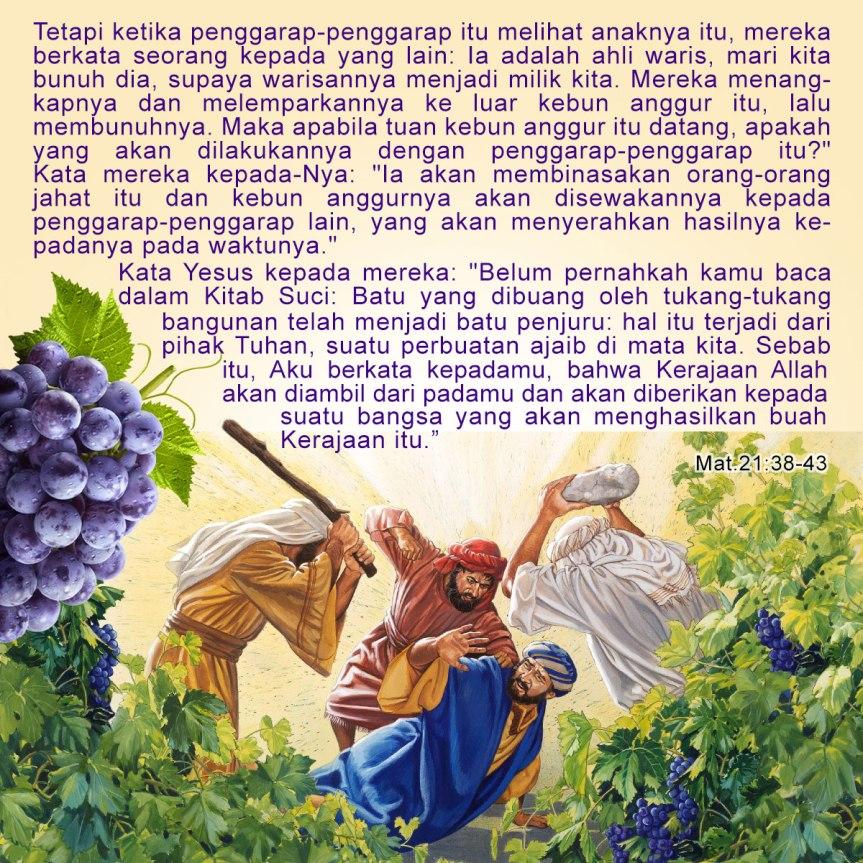 Kebun-Anggur